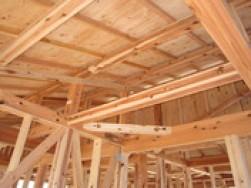 無垢材への想い~なぜ木を使って家を建てるのか?~