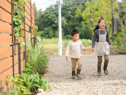 ハーブが一斉に伸びる季節です~浜松市のパッシブ新築注文住宅のマルベリーハウス(桑原建設)