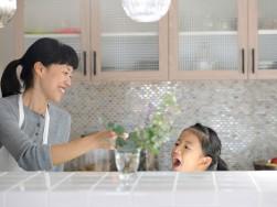 ZEHで家庭のCO2を削減できます~浜松市のパッシブ注文住宅のマルベリーハウス(桑原建設)