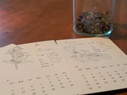ハーブのカレンダー。スタンプ作家HUTTE.さんの作品です ~新築注文住宅 マルベリーハウス